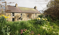 Argoed, Bed and Breakfast, Felindre Farchog, Pembrokeshire