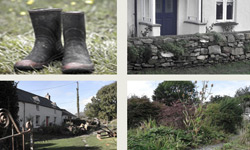 Gumboots and Roses Garden Services