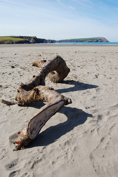 Driftwood on Newport Sands